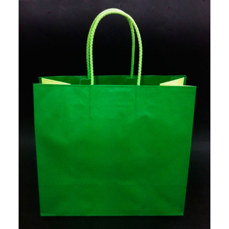 Bolsa Bicolor Verde 2 Tonos 25x12x24 C5 Unidades - Tonos-verde