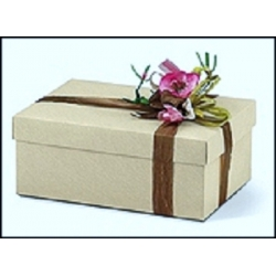 10 Cajas de regalo marfil fondo+tapa 45.5x32x11 cms.