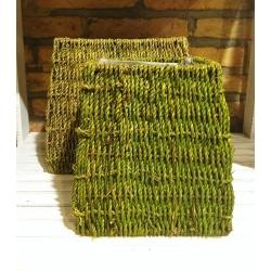 Set de 2 maceteros verde pistacho