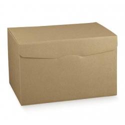 20 Cajas kraft liso 20x20x18 cms.